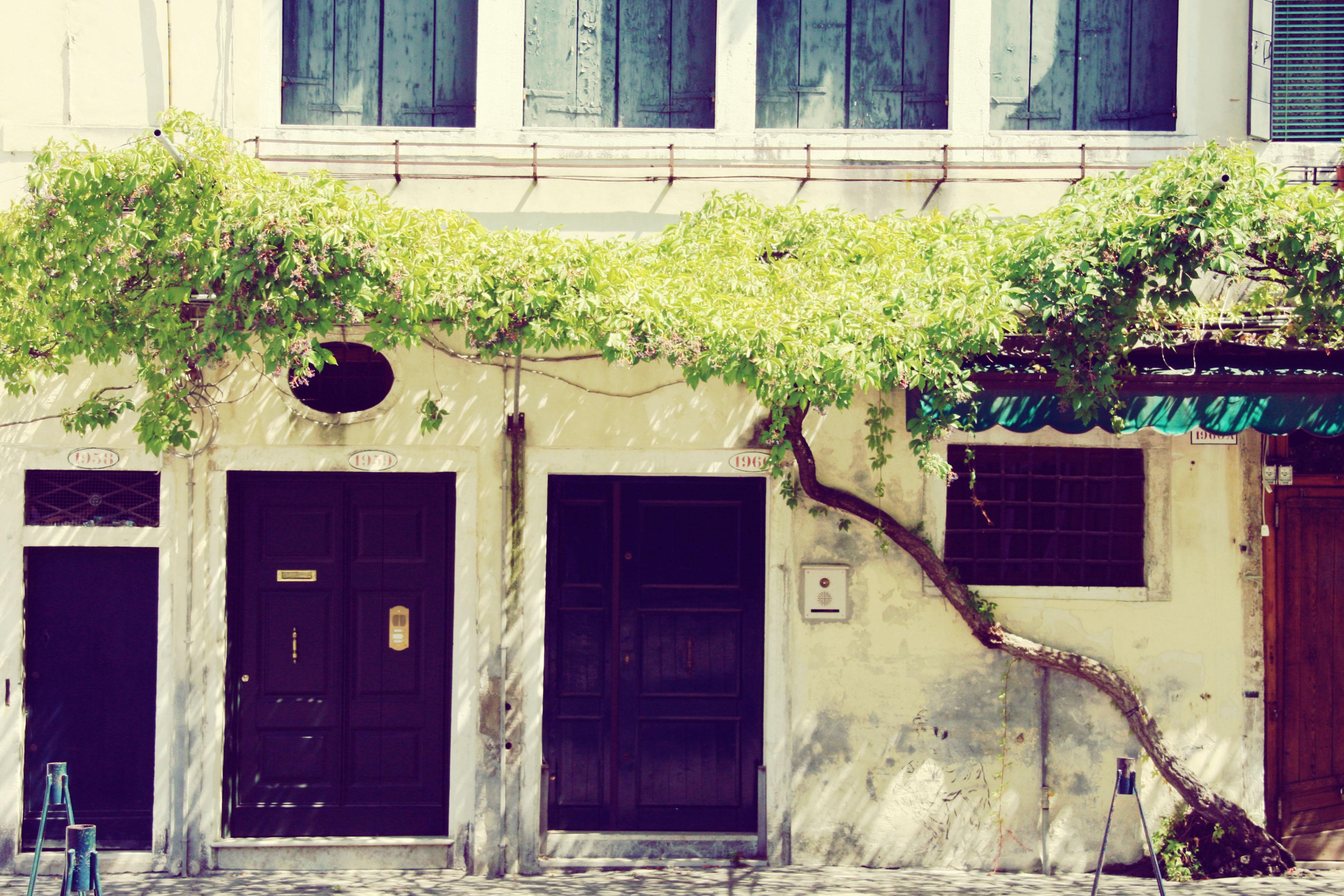 Venezia 2013 I (11)