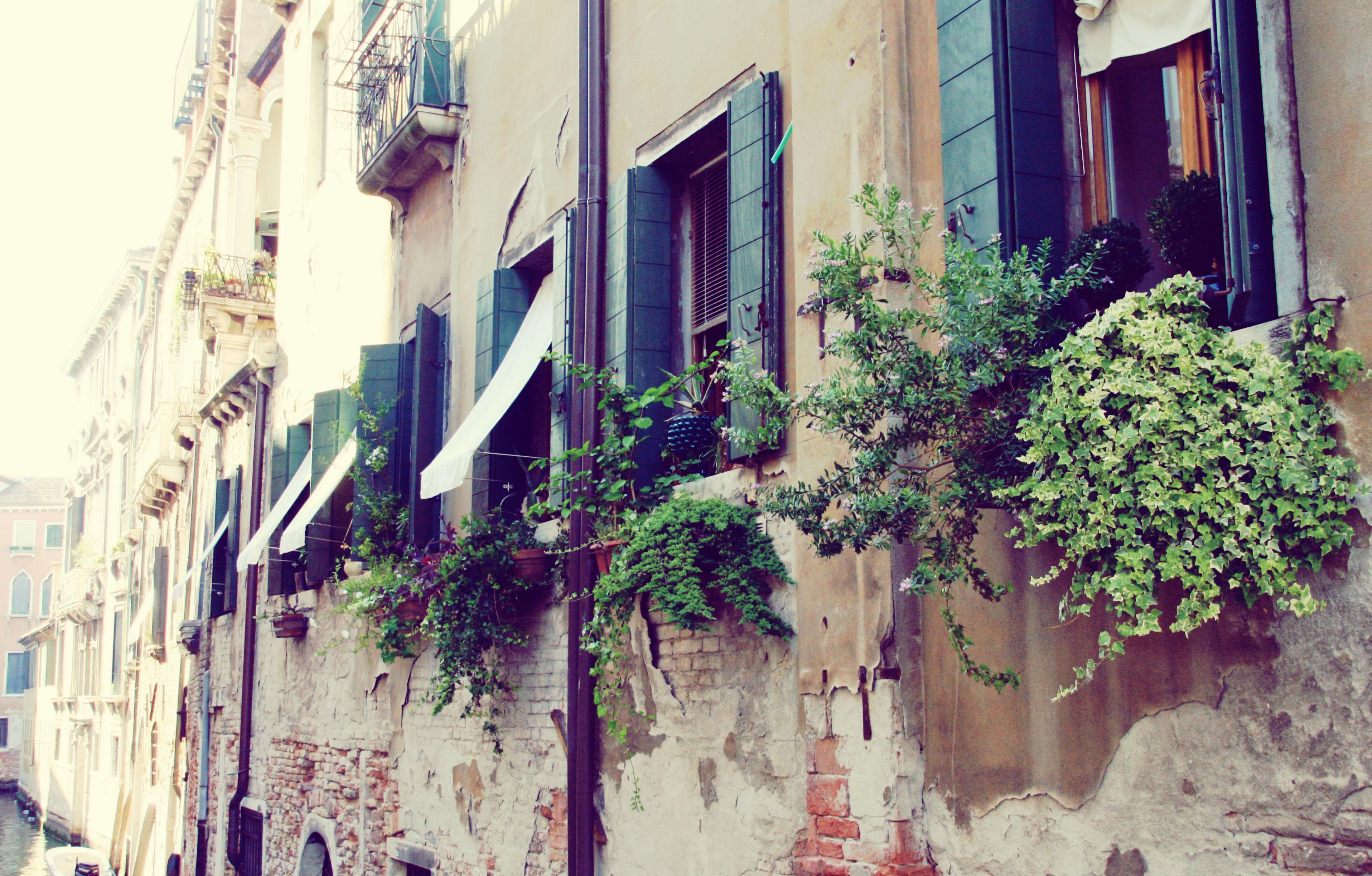 Venezia 2013 I (19)