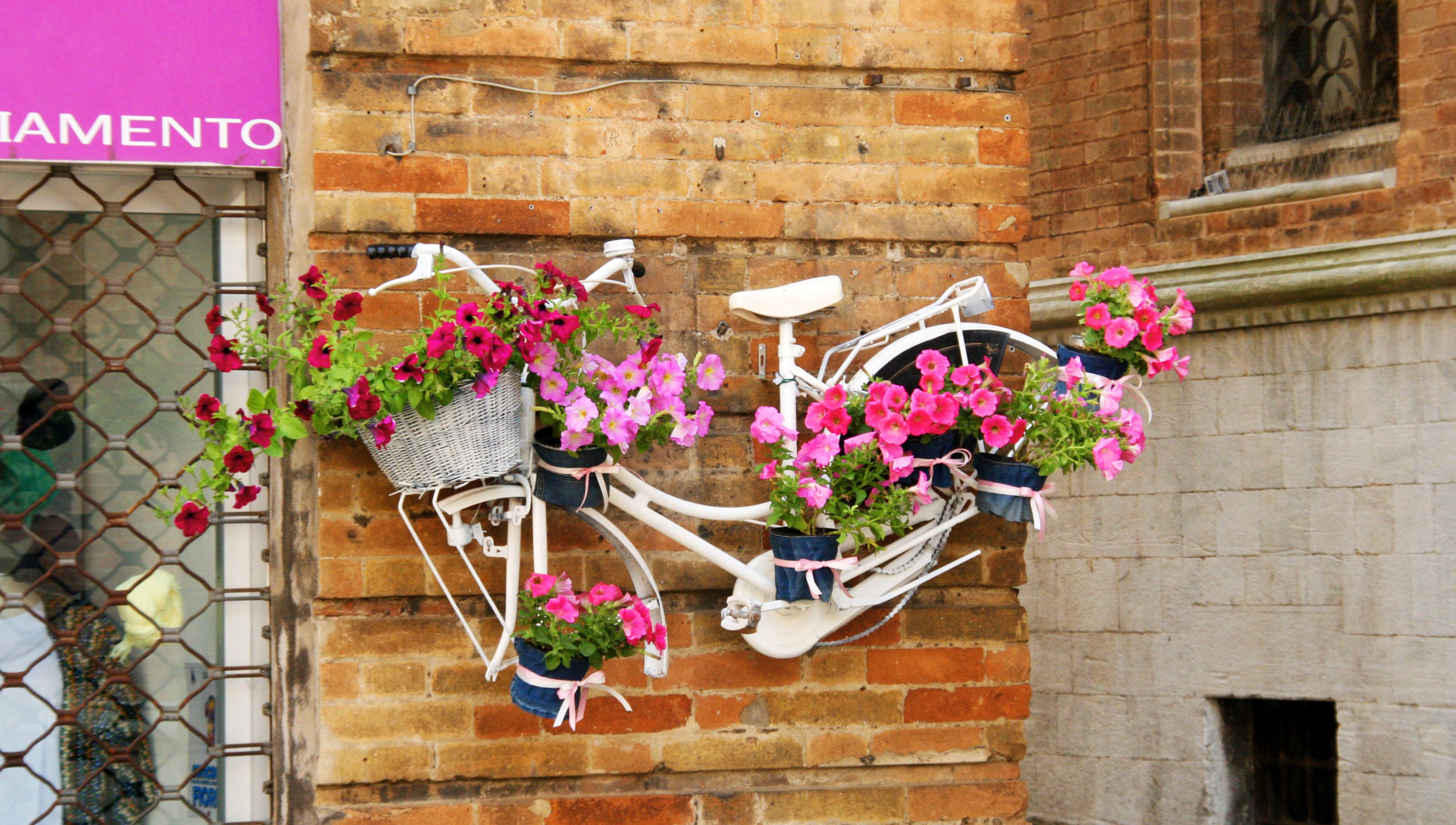 Osimo (4)