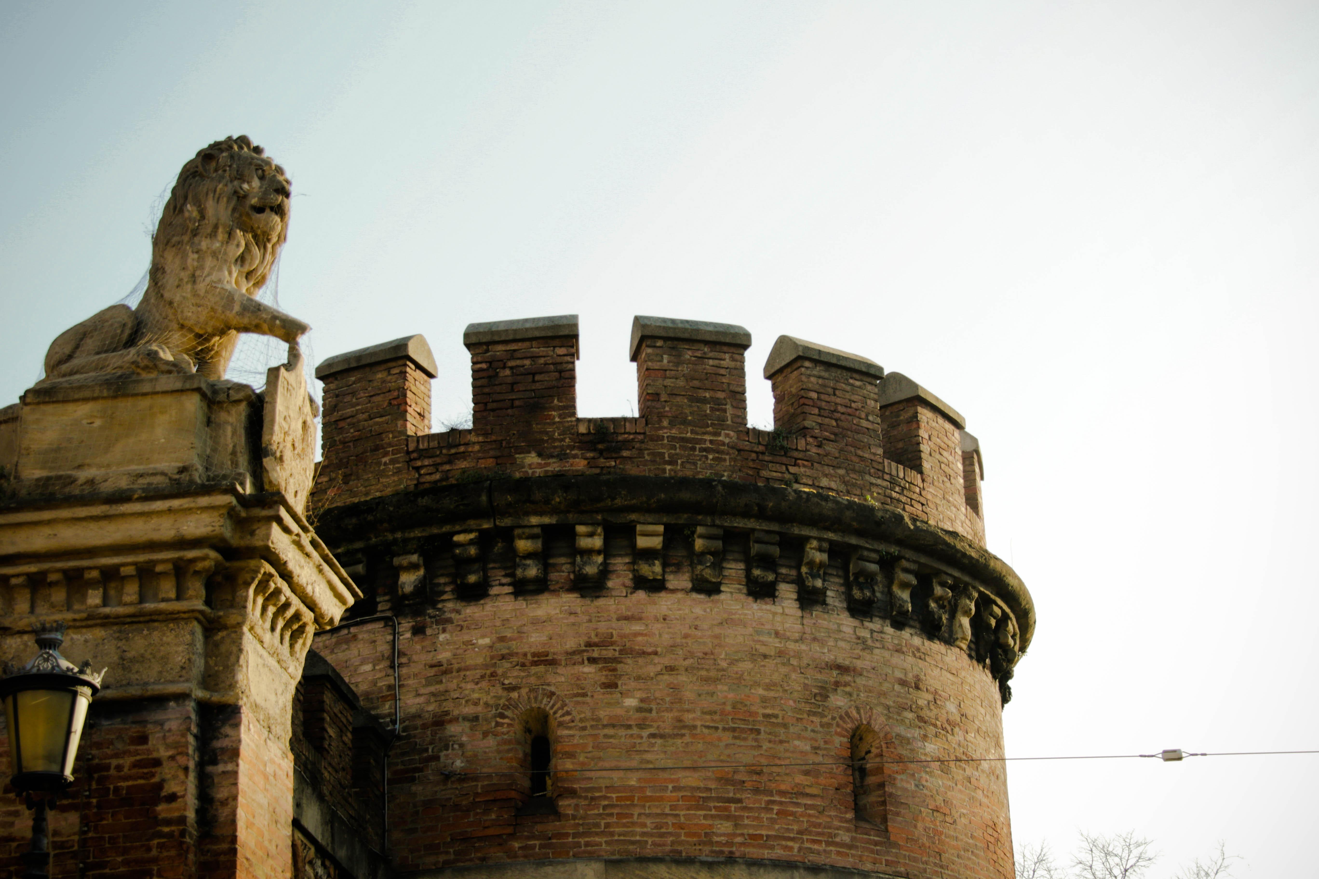 bologna2017-46
